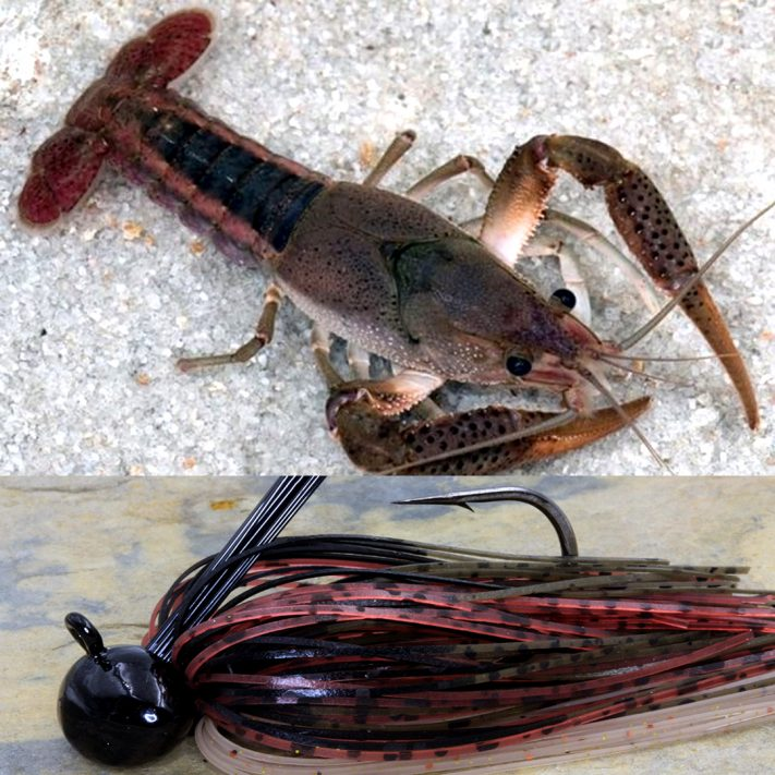 White River Craw Build by Moeller Taylor